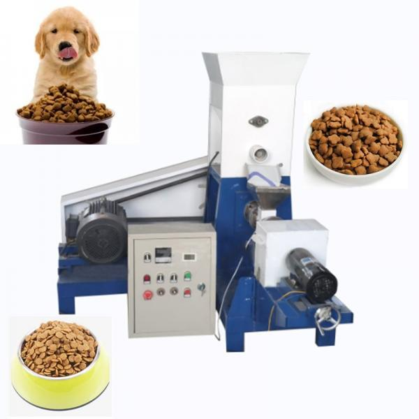 Good Price High Adjustability Automatic Pet Bottle Blowing Machine with 2L Hand Feeding