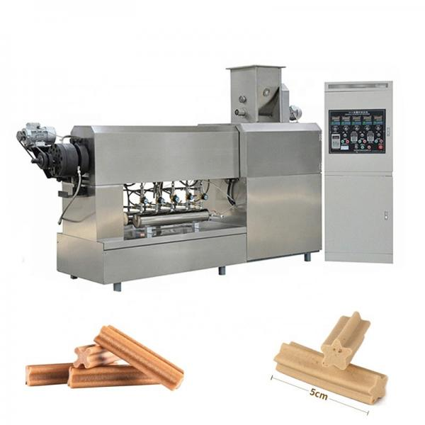 Stainless Steel Complete Turnkey Automatic Pet Food Extrusion Plant Pets Food Snack Dog Food Treats Processing Line Pet Food Pellet Machine